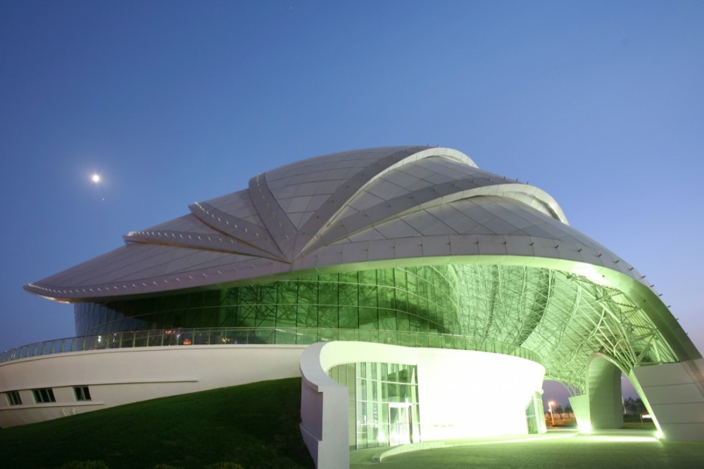Organic Roof Structure